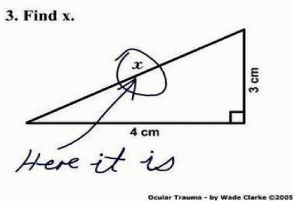 A good essay introduction can be as intriquing as pointing on X in the geometry task